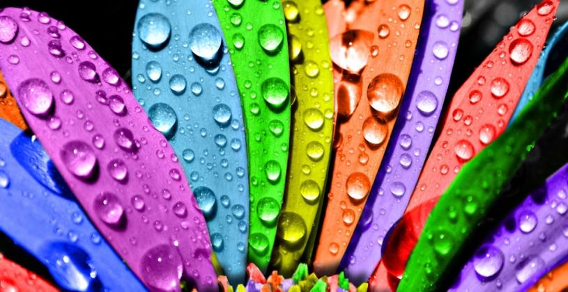 رنگ ها را بهتر بشناسیم / روانشناسی رنگ ها