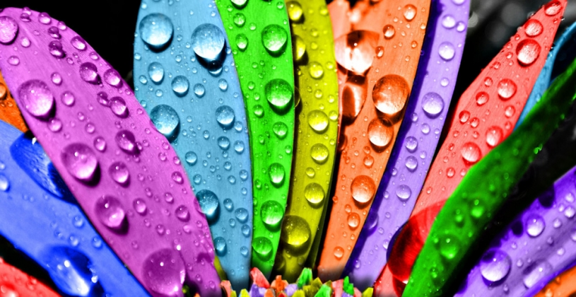 beautiful colorful wallpaper psd eps.com  815x420 - رنگ ها را بهتر بشناسیم / روانشناسی رنگ ها