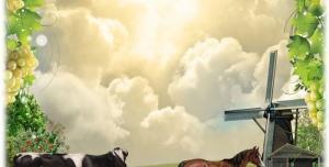 p30 300x152 - قاب و عکس و فریم کودکانه حاشیه درخت انگور با منظره و حیوانات با طرحی شاد بصورت لایه باز مناسب مهد کودک و پیش دبستانی و دبستان + PSD