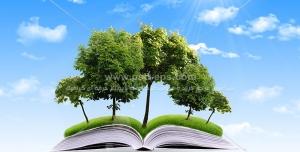 عکس با کیفیت رشد نمادین جنگل از کتاب جهت تبلیغ فرهنگی مطالعه و کتابخوانی
