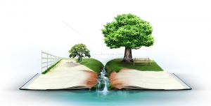 عکس با کیفیت طبیعت سبز زیبا شامل درختان و رود در کتاب باز