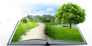 عکس با کیفیت طبیعت زیبای تابستانی دشت با برکه و درختان و راه جاده بر روی کتاب