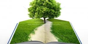 عکس با کیفیت طبیعت با تک درخت بر روی کتاب جهت تبلیغات فرهنگی مطالعه و کتابخوانی