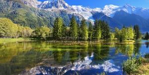 عکس با کیفیت زیبای درختان در کنار برکه با انعکاس تصویر درختان در آب برکه
