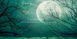 عکس با کیفیت تصویر شب مهتابی و ماه کامل در بین درختان خشک زمستان با زمینه آسمان ابری