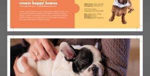 تراکت یا پوستر لایه باز مرکز نگهداری حیوانات یا مراکز درمانی و خدمات بهداشت حیوانات خانگی