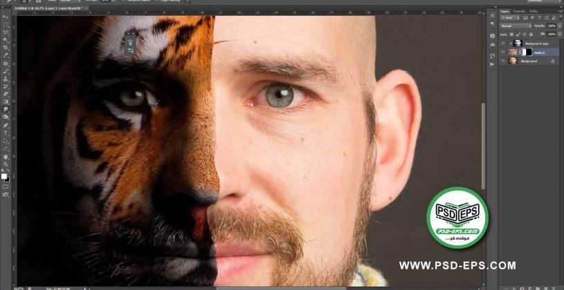 فیلم آموزش رایگان ماسک چهره با حیوانات نظیر پلنگ و ببر با استفاده از فتوشاپ + کیفیت HD