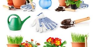 عکس با کیفیت ترکیب تصاویری از گلدان و گیاه ها به همراه لوازم باغبانی ، دستکش و آب پاش