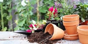 عکس با کیفیت گلدان های سفالی خالی با خاک ریخته شده در کنار آن به همراه گل ها و گیاه ها با زمینه باغ