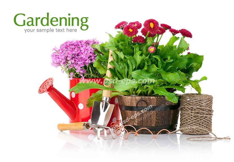 عکس با کیفیت گلدان گل و آبپاش گل کاری شده به همراه لوازم باغبانی