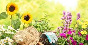 عکس با کیفیت باغ زیبا و رویایی پر از گل به همراه کلاه باغبانی و لوازم آن