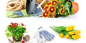 عکس با کیفیت ترکیب تصاویری از گلدان های گل به همراه لوازم باغبانی