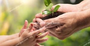 عکس با کیفیت نمادین از ارتباط و دوستی با طبیعت و محیط زیست با تصویر هدیه دادن بوته گیاه کوچک از طرف پدر به کودک