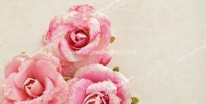 عکس با کیفیت حلقه های طلای عروس و داماد در کنار گل های صورتی