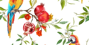 وکتور لایه باز پترن یا پس زمینه طوطی های رنگارنگ استوایی نشسته بر شاخه های درخت انار پربار