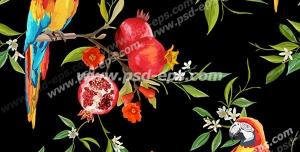 وکتور لایه باز پترن یا پس زمینه با رنگ زمینه مشکی و طوطی های رنگارنگ استوایی و شاخه های درخت انار پربار