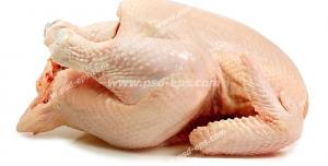 عکس با کیفیت گوشت مرغ کامل خام بر روی زمینه سفید