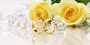 عکس با کیفیت حلقه های طلا در کنار گل های بزرگ رز