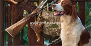عکس با کیفیت کیف ، تفنگ و وسایل شکار در کنار حصار چوبی و سگ آموزش دیده شکاری