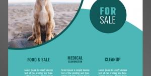 طرح آماده لایه باز پوستر یا تراکت با موضوع خرید حیوانات خانگی و نگهداری از آن آموزش حیوانات