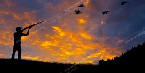 عکس با کیفیت شکارچی در حال نشانه گیری با تفنگ شکاری به سمت پرنده ها در آسمان
