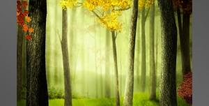 نقاشی و طرح فانتزی لایه باز طبیعت جنگل پاییزی و درختان با برگ های زرد و نارنجی