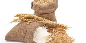 عکس با کیفیت کیسه ای از آرد گندم و دانه های گندم ریخته شده به همراه چند خوشه گندم