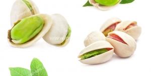 عکس با کیفیت شش نما از پسته های تازه سبز رنگ و برگ درخت پسته مناسب تبلیغات آجیل فروشی ها