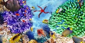 عکس با کیفیت مرجان های قیطانی سبز و بنفش رنگ در کف دریا با ماهی های رنگارنگ در اطراف آنها مناسب آسمان مجازی آکواریوم
