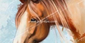 عکس با کیفیت نقاشی آبرنگ پرتره و چهره اسبی قهوه ای با یال های قهوه ای و زمینه آبی روشن