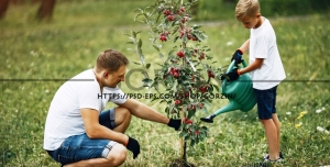عکس پس زمینه کاشت درخت، مناسب روز درختکاری و محیط زیست