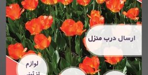طرح آماده لایه باز پوستر یا تراکت فروشگاه گل گلسرا با محوریت تصویر دشت گل قرمز