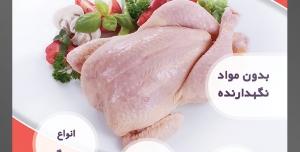 طرح لایه باز تراکت فروشگاه مواد پروتئینی گوشت مرغ با محوریت تصویر مرغ پاک شده با سبزیجات