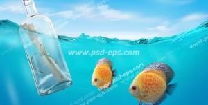 عکس با کیفیت تبلیغات نامه در بطری در کنار دو ماهی کوچک نارنجی