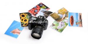 عکس با کیفیت دوربین عکاسی حرفه ای در کنار عکس های چاپ شده از طبیعت