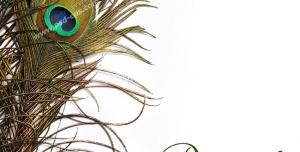 عکس با کیفیت تبلیغات کارت پستال با طرح سه پر طاووس