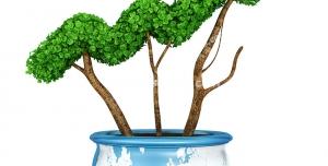 عکس با کیفیت تبلیغاتی گلدانی با طرح کره زمین که گیاه روئیده شده از آن به صورت فلش نمودار صعودی طراحی شده است