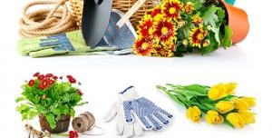 عکس با کیفیت تبلیغاتی وسایل باغبانی و گل های زیبا
