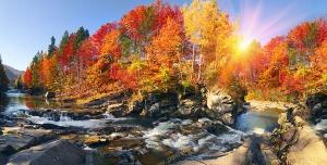 عکس با کیفیت تبلیغاتی پاییز در طبیعت