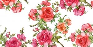 عکس با کیفیت تبلیغاتی گل های رز بسیار زیبا