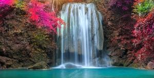 عکس با کیفیت تبلیغاتی گل های ارغوانی در کنار آبشار زیبا