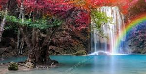 عکس با کیفیت تبلیغاتی آبشار منتهی به دریاچه رنگین کمان و درخت