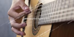 عکس با کیفیت تبلیغات گیتار کلاسیک C40