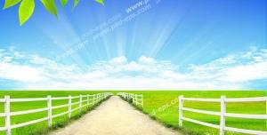 تصویر با کیفیت تبلیغاتی جاده سر سبز زیر آسمان آبی