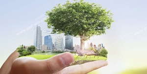 عکس با کیفیت تبلیغاتی یک تکه از زمین در دستان مرد با پس زمینه طبیعت