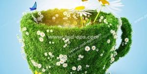 عکس با کیفیت تبلیغاتی فنجان سرسبز با گل های سفید