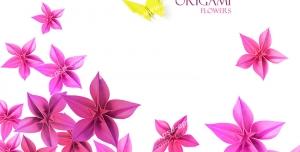 عکس با کیفیت تبلیغاتی گل های صورتی و پروانه زرد کوچک