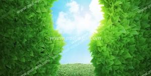 عکس با کیفیت تبلیغاتی سوراخ قفل تشکیل شده از گیاه