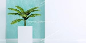عکس با کیفیت تبلیغاتی گلدان سفید چینی با بک گراند آبی سفید
