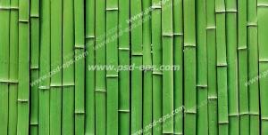 عکس با کیفیت تبلیغاتی نی های سبز بامبو در کنار یکدیگر به صورت عمودی